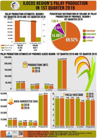 1st Quarter 2019 Palay Production Infographics