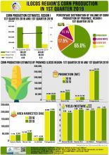 1st Quarter 2019 Corn Production Infographics